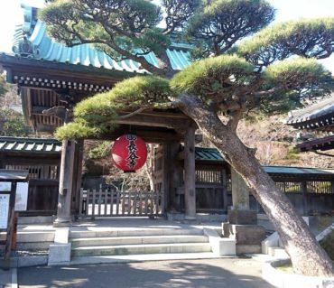 昨年末の写経を、長谷寺に納経してきました/鎌倉市長谷の書道教室