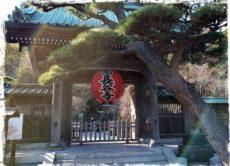 2019年の写経を納経してきました/鎌倉市長谷の書道教室